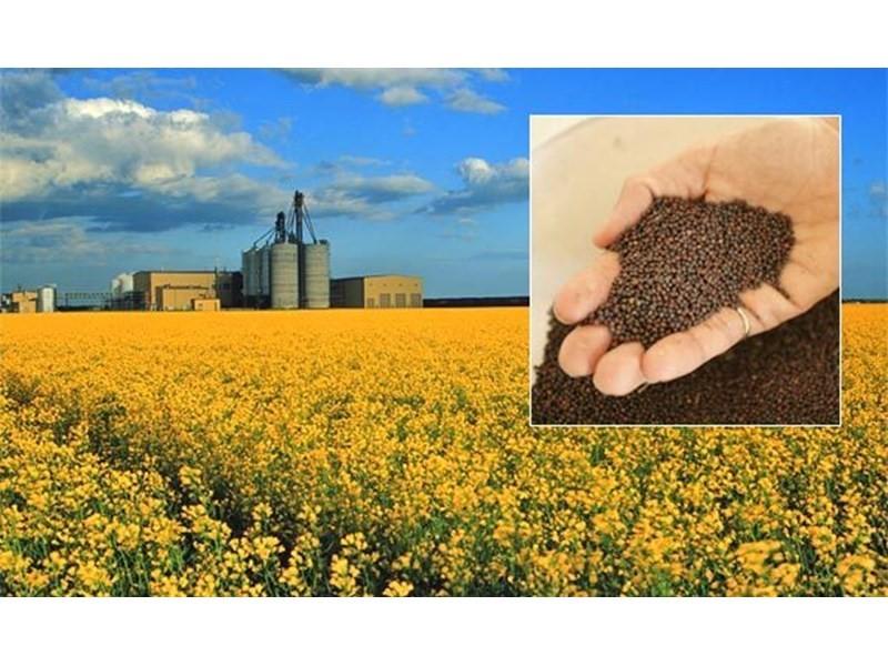 Глицерин в сельском хозяйстве